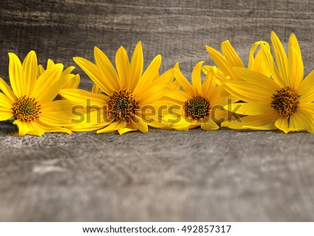 yellow flowers aligned along a wooden board