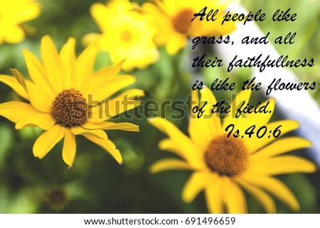Yellow flowers quote bible stock photo royalty free 691496659 yellow flowers and quote from bible mightylinksfo