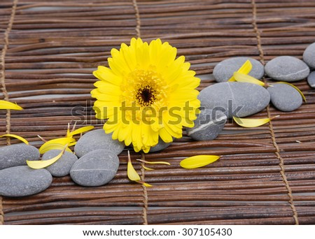 Yellow flowers closeup with zen stones on mat - stock photo
