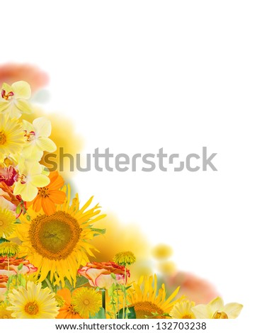 yellow flowers corner isolated on white background