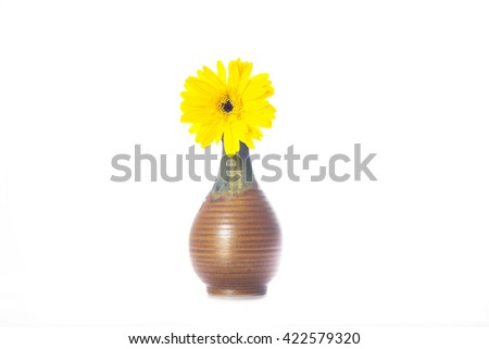 yellow flowers in a vase on a white background - stock photo