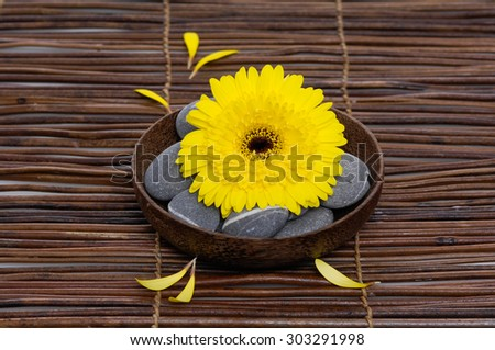 Yellow gerber with gray stones in bowl on mat,petals  - stock photo