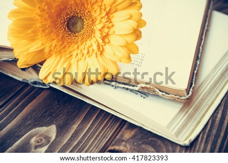 Yellow gerbera daisy and old books on a wooden desk vintage concept