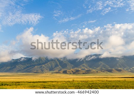 yellow grass on the field in front of mountains in clouds