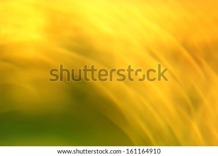 yellow-green plants background out of focus - stock photo