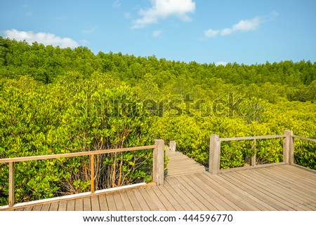 Yellow Green Tree Scenery with Leading Line Path Walk Way in a Sunny Day at Thung Prong Tong, Prasae, Rayong, Thailand - stock photo