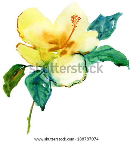 Yellow  hibiscus, watercolor painting. - stock photo
