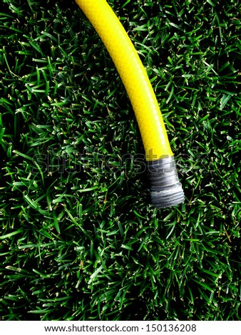 Yellow hose with water spraying on green grass - stock photo