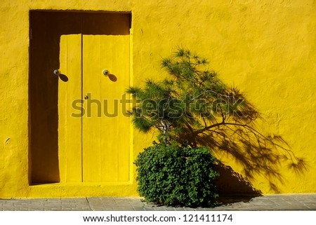 Yellow house and door with green plant in sunny day, nice and bright contrast, colorful yellow background, yellow exterior, yellow door, street in Malta - stock photo