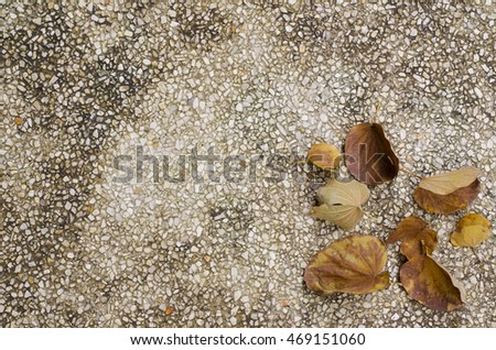 Yellow Leave on gravel background