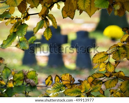 Yellow leaves against the background of crosses at the German war cemetery near Ypres, Belgium