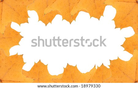 yellow leaves frame, background, insert your text