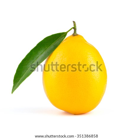 Yellow lemon with leaf isolated on white background
