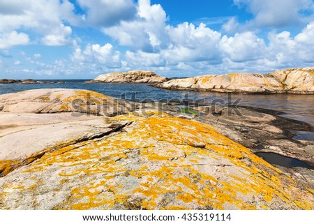 Yellow lichen on the rocks by the sea - stock photo