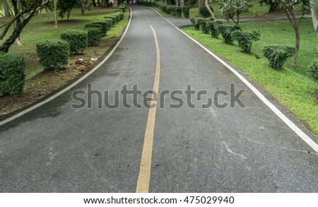 Yellow line on Asphalt road with green trees and trimmed bush plants in the park