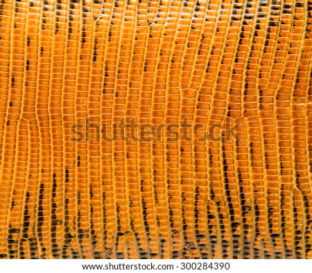 Yellow lizard skin, abstrat leather texture for background.  - stock photo
