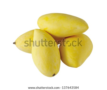 Yellow mango isolated on white - stock photo