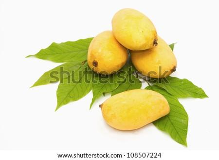 Yellow mango on a white background - stock photo