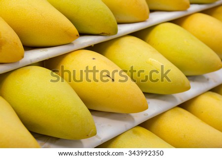 Yellow mangoes are in shell
