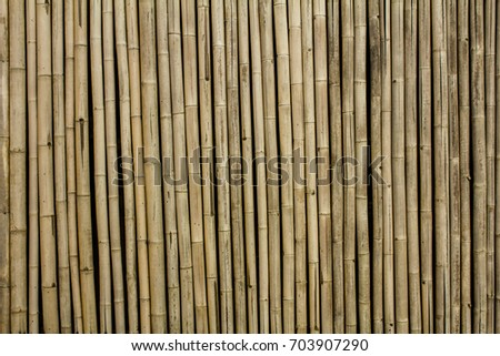 Yellow or brown bamboo wall background and texture, Beautiful old bamboo fence for design and architect, Wooden workings, Dry old bamboo wall or backdrop
