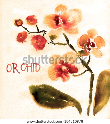 yellow orchid isolated on white  painted in watercolor - stock photo