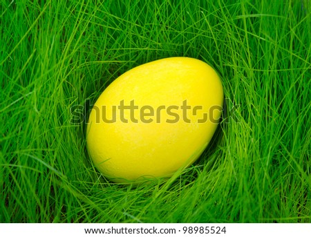 Yellow painted Easter egg in the grass