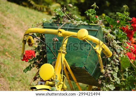 Yellow painted old bicycle with a geranium flowers in wooden box. Garden vintage decoration. - stock photo