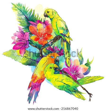 yellow parrots and exotic flowers on a white background  - stock photo