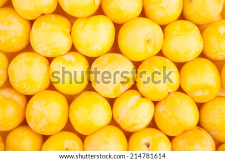 yellow plum background texture
