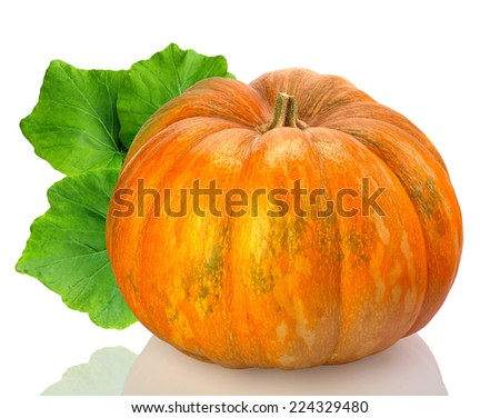 yellow pumpkin vegetable with green leaves isolated on white background  - stock photo