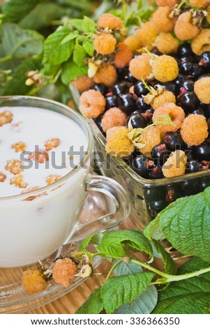 Yellow raspberries smoothie in a cup in retro style