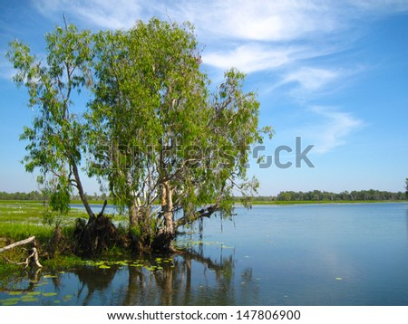 Yellow River, Kakadu National Park, Australia - stock photo