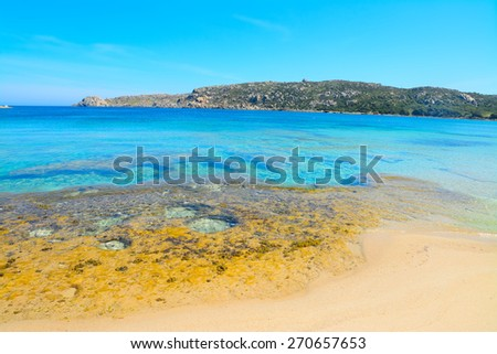 yellow rocks in Capo Testa shoreline, Sardinia