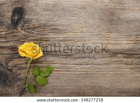 Yellow rose on wooden background. Blank board, copy space - stock photo