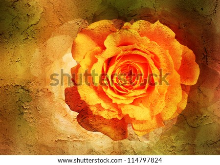 yellow rose - vintage styled picture with patina texture - stock photo