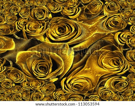 Yellow Roses Abstract - stock photo