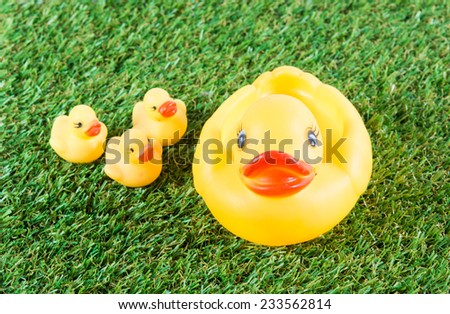 Yellow rubber duck on green grass background