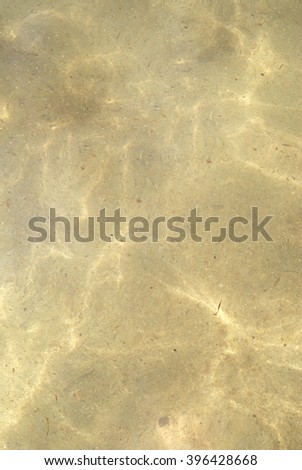 Yellow sand under transparent water - stock photo