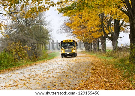 Yellow school bus running on forest road with scattered autumn leaves - stock photo