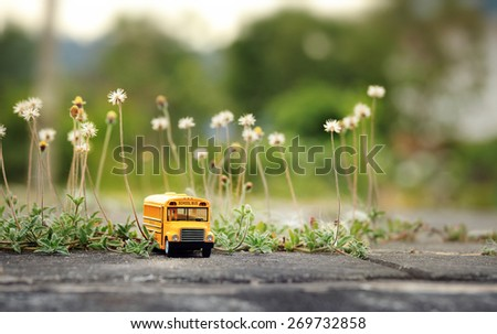 Yellow school bus toy model on country road. - stock photo