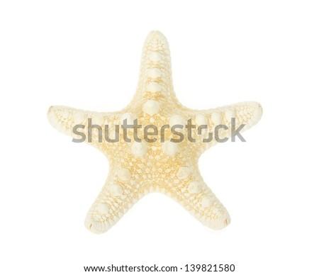 Yellow starfish close up isolated on white - stock photo