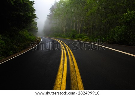 Yellow street lines curving into a misty forest near Cape Meares State Park, Oregon  - stock photo