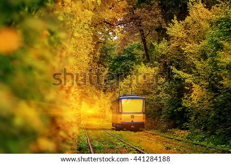 yellow tram in the deep sunny forest. natural autumn background