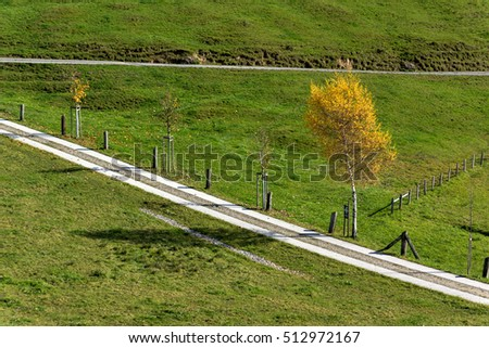 Yellow trees in autumn landscape under mount Rigi, Alps, Switzerland