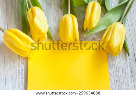Yellow tulips and blank card - stock photo