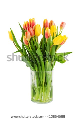 Yellow tulips bouquet in vase. Isolated over white background
