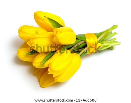 yellow tulips tied up with a ribbon isolated on white background - stock photo