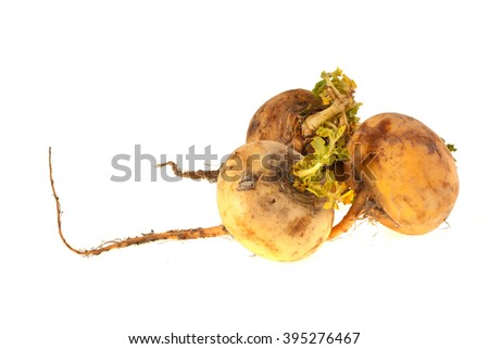 Yellow turnips isolated on a white background