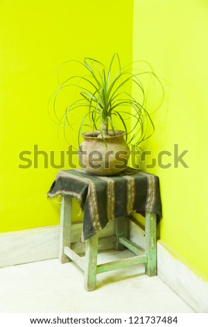 Yellow wall with pot - stock photo