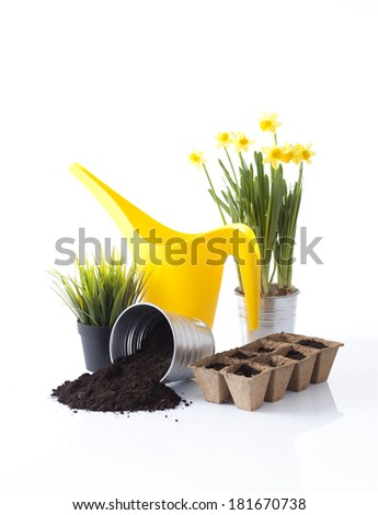 yellow watering can and garden tools and plants isolated on white - stock photo